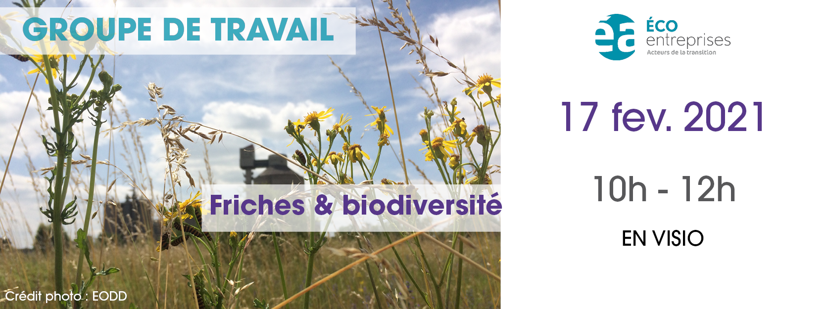 [SAVE THE DATE] Groupe de travail : Friches & Biodiversité