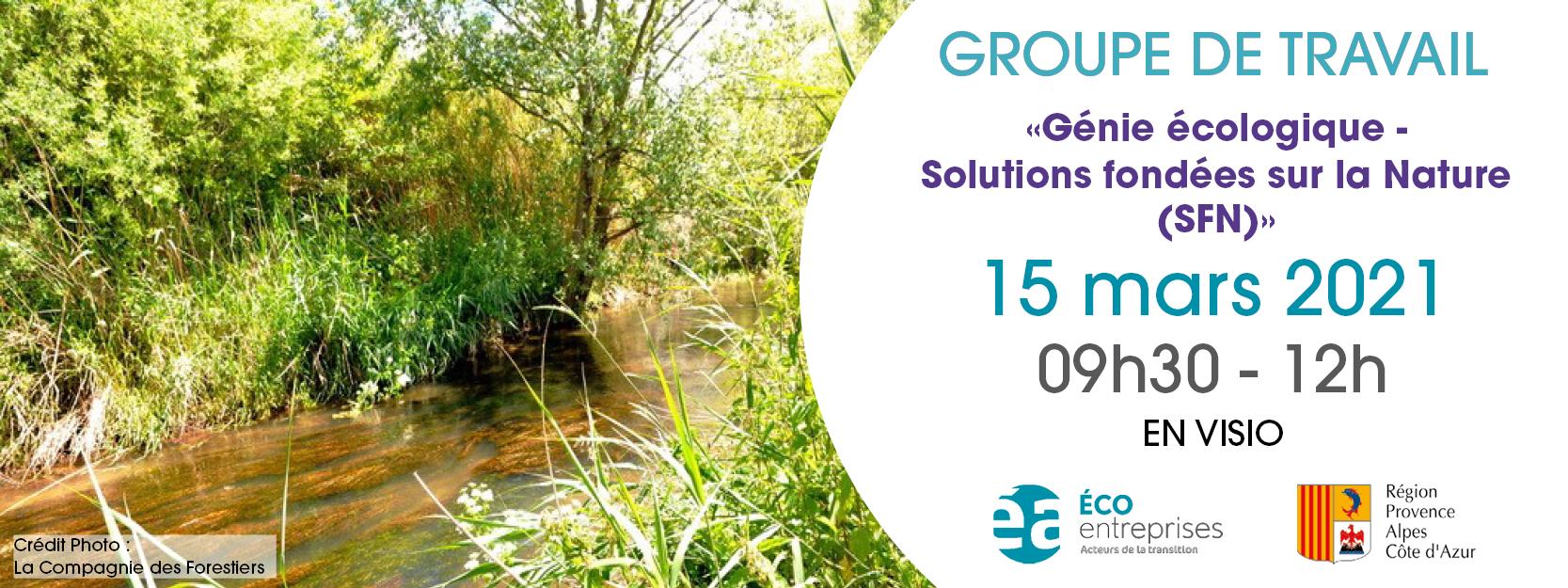 Groupe de Travail Génie écologique – Solutions fondées sur la Nature (SFN)